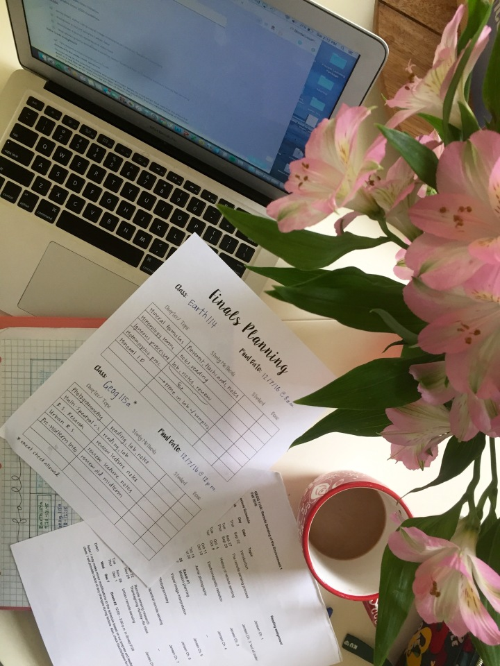 finals season, free printable
