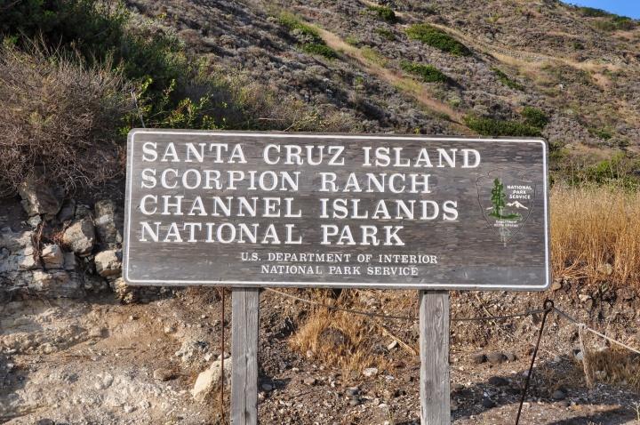 Camping on Santa CruzIsland